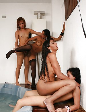 Latina shemale on shemale sex with Chaiani Kevelin and Fernanda Beatriz